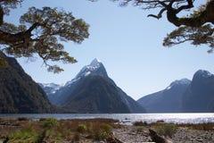 Meatre NZ máximo Imagem de Stock