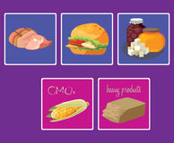 Meats, sweets, fast food, GMO, heavy products. Food is harmful to the intestines. For your convenience, each significant element is in a separate layer. Eps 10 Royalty Free Stock Photos