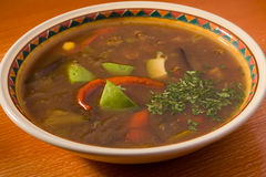 meatsoupgrönsaker royaltyfri foto