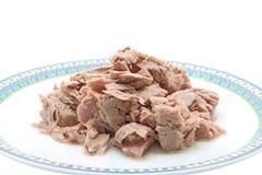meattonfisk royaltyfri fotografi