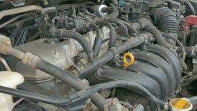 Mecánico de automóviles que trabaja examinando el motor del motor de coche con una antorcha Servicio de reparación almacen de video