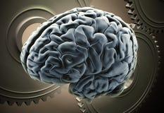 Mecánicos del cerebro Imagen de archivo libre de regalías