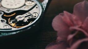 Mecanismo caro do relógio de pulso na ação, fim acima do vídeo da zorra filme