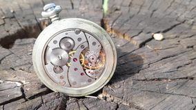Mecanismo del reloj en fondo de madera almacen de metraje de vídeo