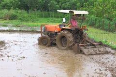 Mecanização do fazendeiro tailandês para o cultivo do arroz Fotografia de Stock