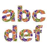 Mecanografiado decorativo con el modelo natural Alfabeto florido, Ca ilustración del vector