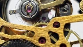 Meccanismo degli orologi meccanici del polso video d archivio