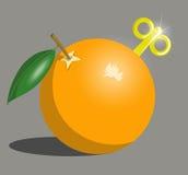 Mech anaranjado Fotos de archivo libres de regalías