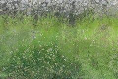 Mech i foremka na ścianie Obraz Stock