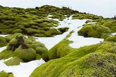 Mech Iceland Zdjęcie Royalty Free