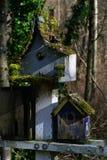 Mech na Birdhouses Fotografia Stock