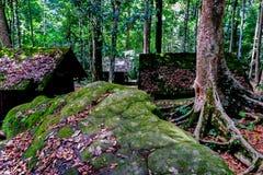 Mech na chałupa dachu przy Phu Hin Rong Kla parkiem narodowym Zdjęcie Stock