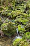Mech Zakrywać skały I Halna rzeka Obrazy Stock