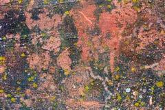 Mech Zakrywająca Gipsująca ściana Zdjęcia Royalty Free