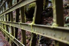 Mech zakrywający bridżowy zbliżenie Fotografia Stock