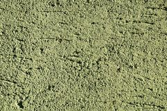 Mech zieleni stiuku tekstura Obraz Stock