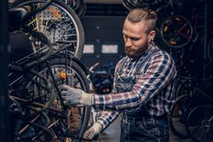 Mechanic doing bicycle wheel service manual in a workshop. royalty free stock photos