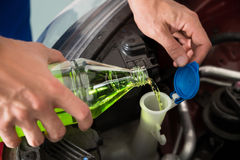 Mechanic Pouring Windshield Washer Fluid Royalty Free Stock Photography