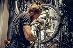 Mechanic removing bicycle rear cassette in a workshop. Red hair bearded mechanic removing bicycle rear cassette in a workshop stock photography