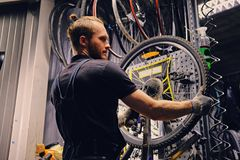 Mechanic repairing bicycle wheel tire in a workshop. Bearded mechanic repairing bicycle wheel tire in a workshop. Back view, service manual stock photo