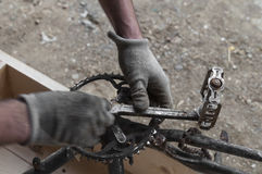 Mechanic repairing a bike, chainring and pedals Stock Photo