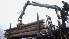 Mechanical arm loader unloads wood logs from heavy truck at sawmill production. Cold cloudy winter day stock video