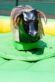 Mechanical Bull Ride Royalty Free Stock Photo