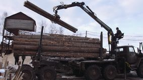 Mechanical claw loader unloads lumber logs from heavy truck at sawmill factory. Cold cloudy winter day stock video footage