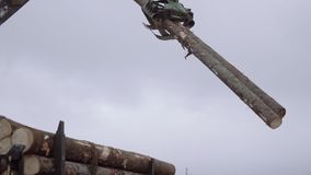 Mechanical claw loader unloads wood logs from heavy truck at sawmill facility. Cold cloudy winter day stock footage