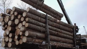 Mechanical claw loader unloads wood logs from heavy truck at sawmill production. Cold cloudy winter day stock footage