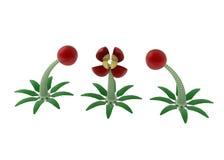 Mechanical Flowers. 3 mechanical 3d flowers, horizontal Stock Photos