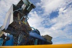 Mechanical harvesting Stock Photos