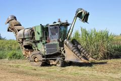 Mechanical harvesting of sugar cane in Australia Stock Image