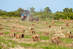 Mechanical packing hay Stock Photos
