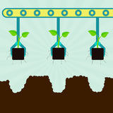 Mechanical planting seedlings Stock Images