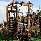 Mechanical pruning of plants in a vineyard Stock Photos