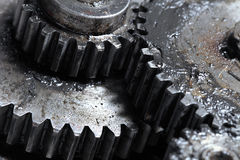 Mechanical Transmission of rotation means of gears Stock Image