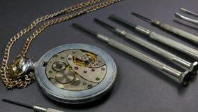 Mechanical watch repair. Process repair a part on a mechanical watch.  stock footage