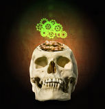 The  mechanism of gear over the open skull with the brain in the Royalty Free Stock Photos