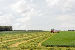 Mechanized mowing grass. Mechanized grass cutting and merging for silage storage purposes Stock Images