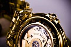 mechanizmu zegarka nadgarstek zdjęcie royalty free
