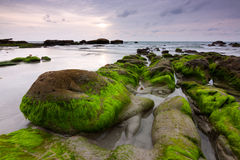 Mechate skały przy plażą w Kudat, Sabah, Wschodni Malezja fotografia royalty free