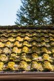 Mechaty dach hovel w ogródzie zdjęcia royalty free