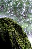 Mechaty kamień z siklawy tłem Fotografia Stock