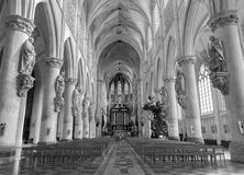 Mechelen - ступица собора St. Rumbold стоковое фото rf