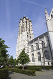 Mechelen Cathedral, Belgium Stock Photography