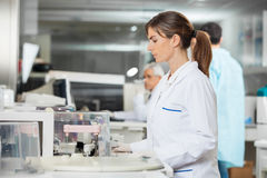 Mecial Research Tech Using Centrifuge. Side view of female researcher using centrifuge in medical lab Stock Photography