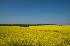 Mecklenburg landscape Royalty Free Stock Photo