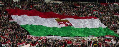 mecz futbolowy Hungary holandie vs Zdjęcia Royalty Free