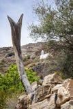 Meczetowy Saiq plateau Obraz Royalty Free